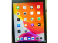 ipad-mini-4-128-gb-with-sim-and-touch-id-small-0