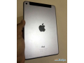 ipad-mini-4-128-gb-with-sim-and-touch-id-small-3