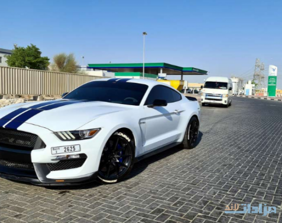 shelby-gt350-2016-for-sale-big-5