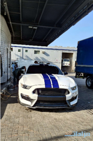 shelby-gt350-2016-for-sale-big-2