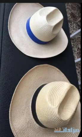 twin-straw-hats-big-0