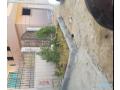 roof-gardynya-hayts-1-small-0