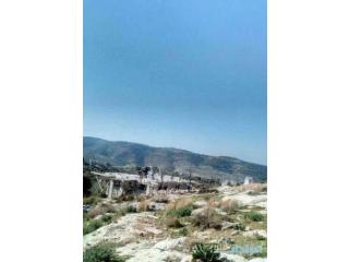 ارض للبيع في قرى عجلون