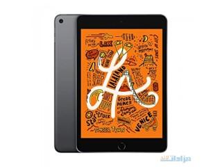Apple iPad Mini (Wi-Fi, 64GB) - Space Gray (Latest Model)