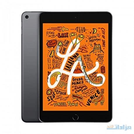 apple-ipad-mini-wi-fi-64gb-space-gray-latest-model-big-0