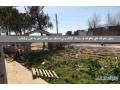 villa-and-land-for-sale-in-chtoura-small-1