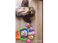 toys-different-price-small-1