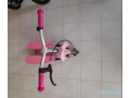 pedal-scooter-small-1
