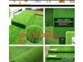 carpet-small-0