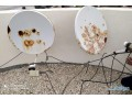 satellite-dish-receiver-saleing-available-small-3