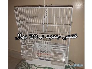 » ذكر كروان حار الرياض