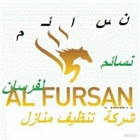 shrk-nsaem-alfrsan-shrk-tnthyf-balryad-nkl-athath-0559099219-big-2